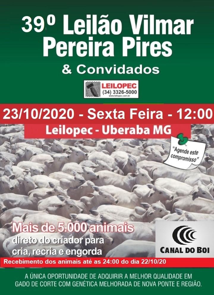 39º LEILÃO VILMAR PEREIRA PIRES E CONVIDADOS.