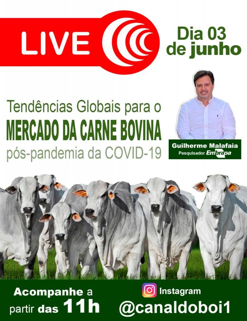 CANAL DO BOI REALIZA LIVE TEMA TENDÊNCIAS GLOBAIS MERCADO DA CARNE BOVINA.