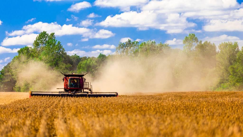 PIB DO AGRONEGÓCIO REGISTROU AVANÇO DE 5,26% NO 1° SEMESTRE.