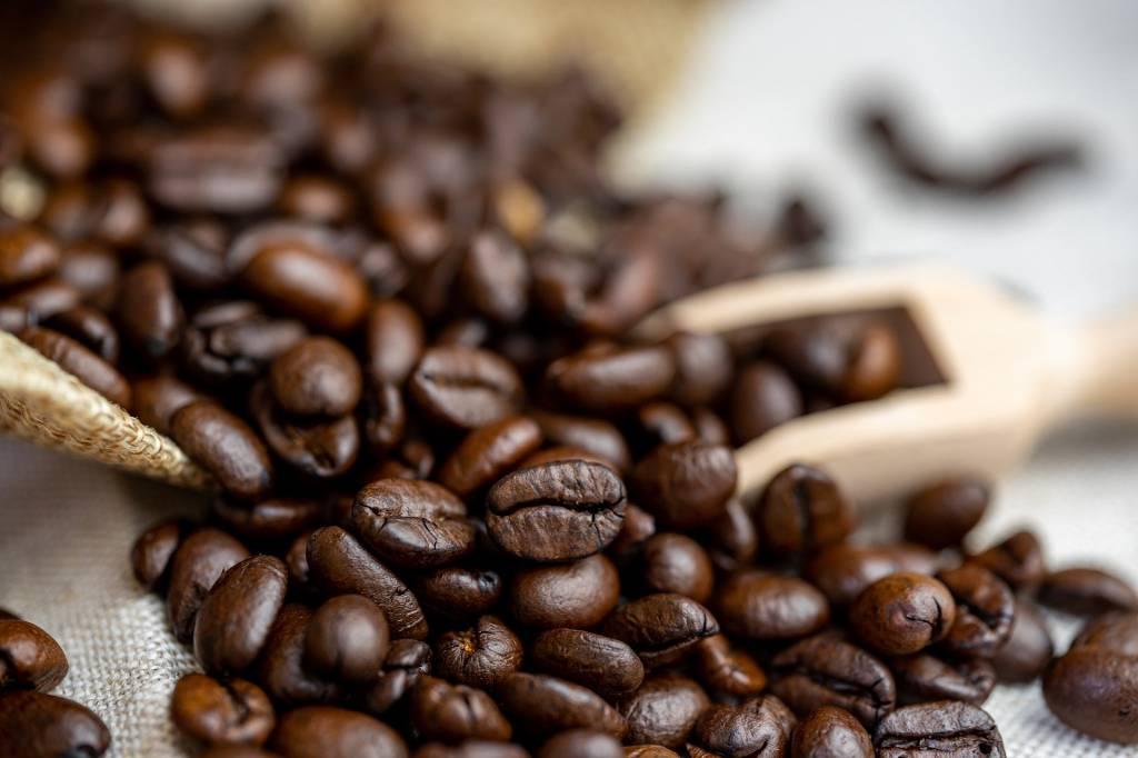 PRODUÇÃO DA SAFRA DE CAFÉ 2020/2021 DEVE SER ELEVADA, APONTA CEPEA.
